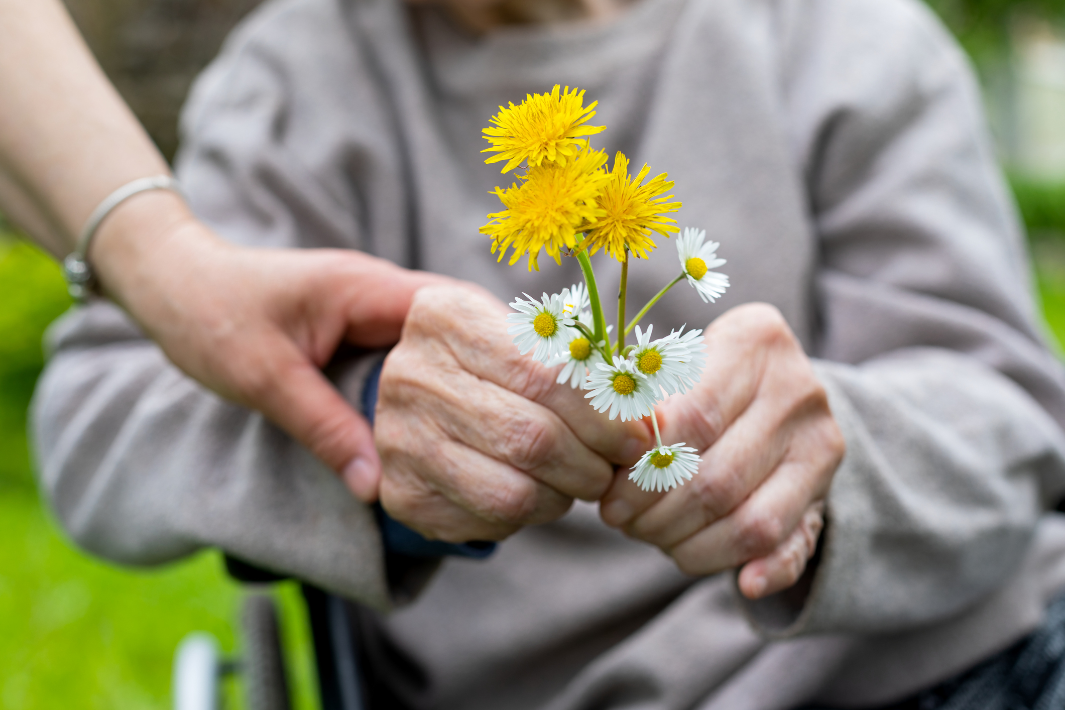 Elderly man holding flowers